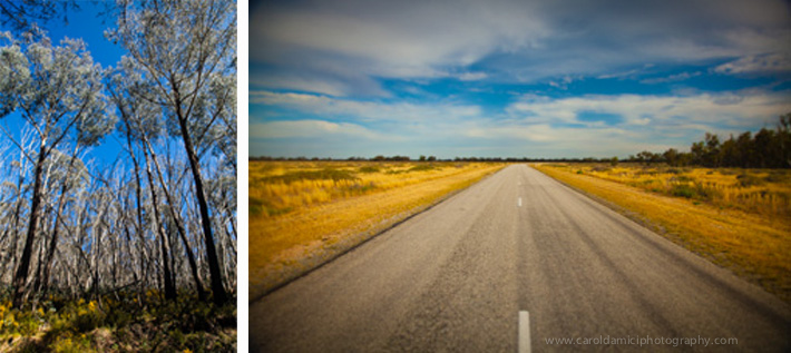 Drive the Alpine Way and Riverina Highway to Mildura, VIC