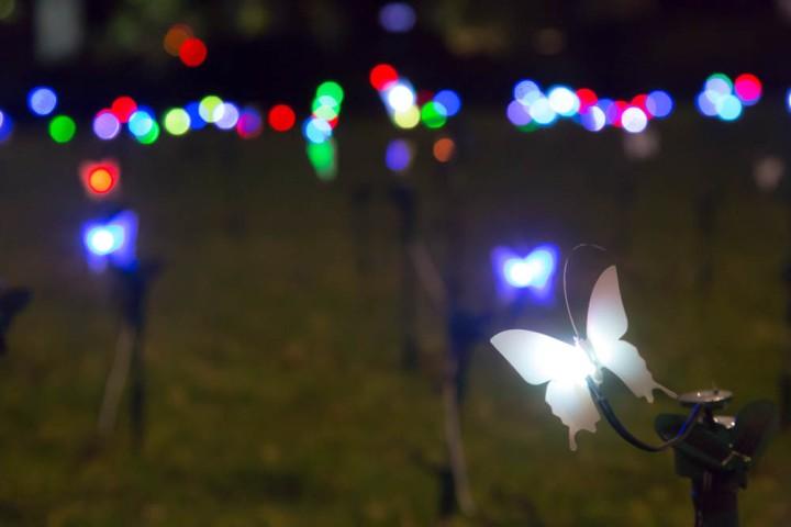 Sydney Vivid 2014 Light Festival - commencing May 23